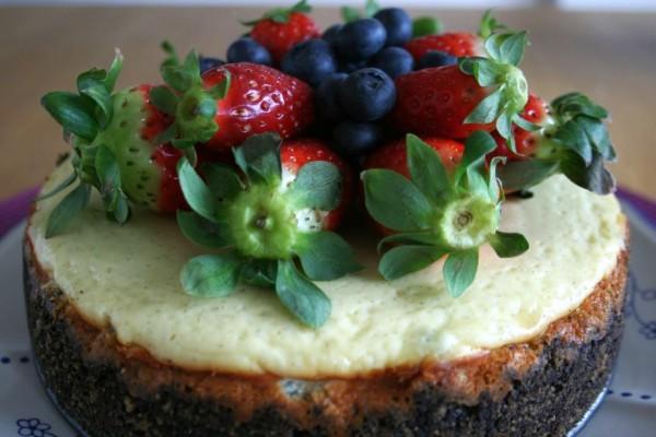 Cheesecake_66